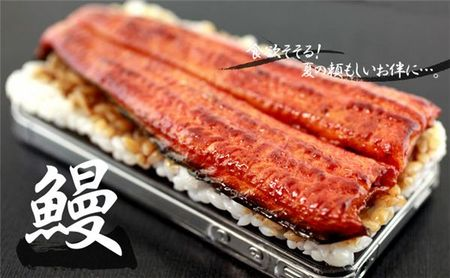 Unagi_iphone2
