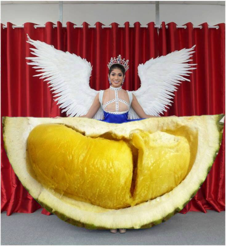 Miss_universe_photoshopbattle_hillaryyeo