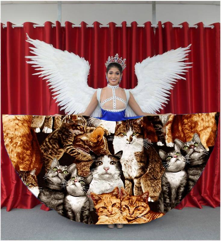 Miss_universe_photoshopbattle_jerbear4